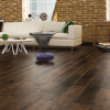mordic-maple-floor-laminates